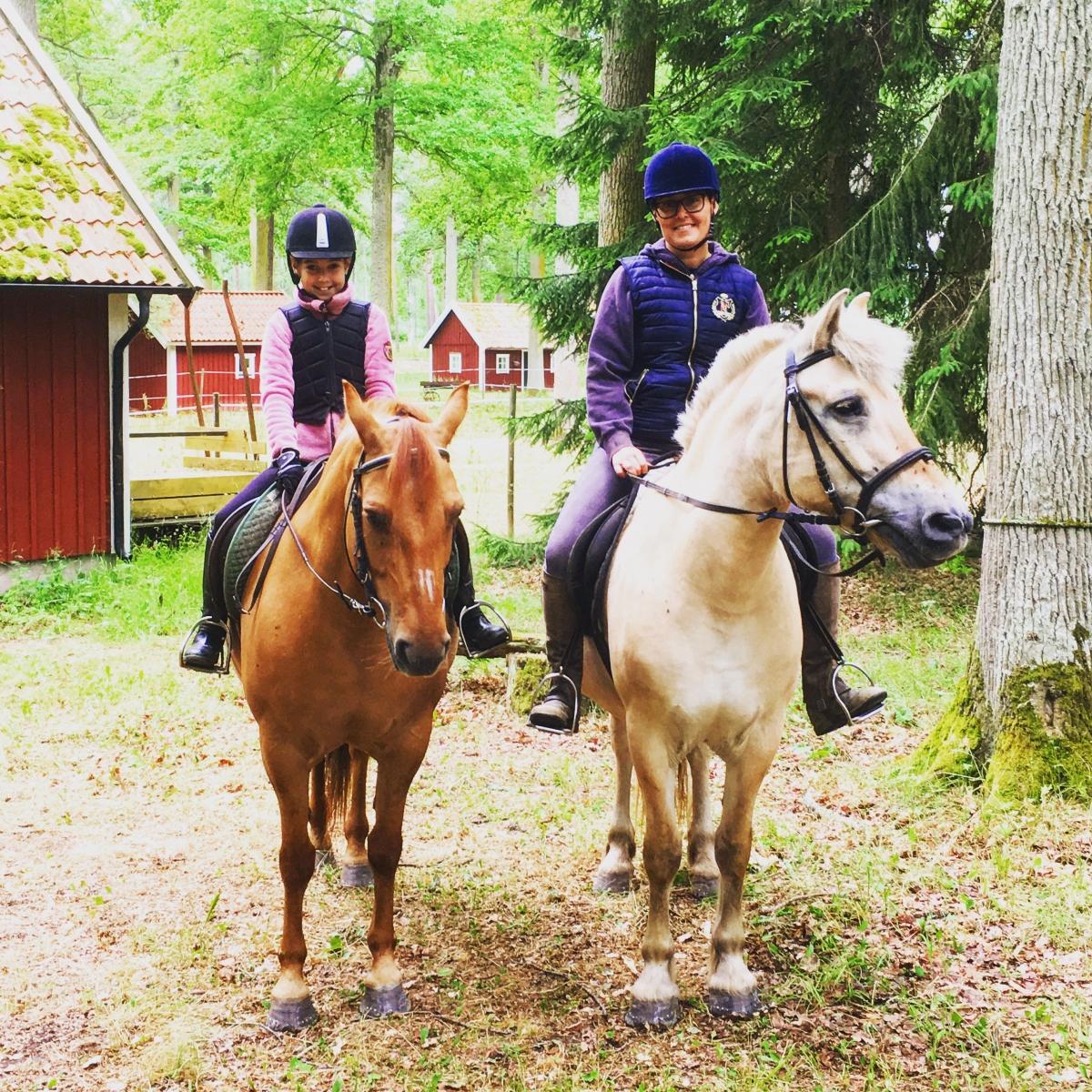 hyra häst östergötland